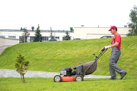 Why Garden Maintenance is Become Essential?