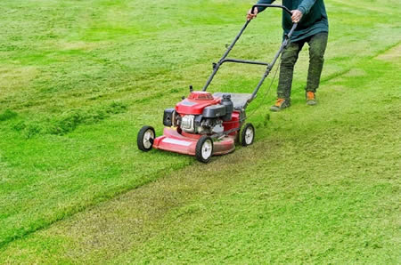 Features of Honda Mowers that make them an Excellent Choice for Landscaping