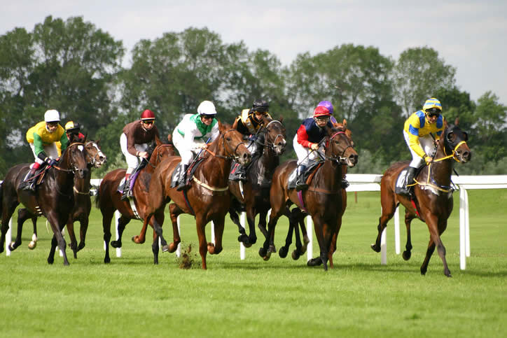 Horse racing tours have given tourism business a shot in the arm