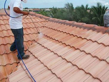 How-To-Choose-A-Professional-Service-Provider-For-Cleaning-Roofs
